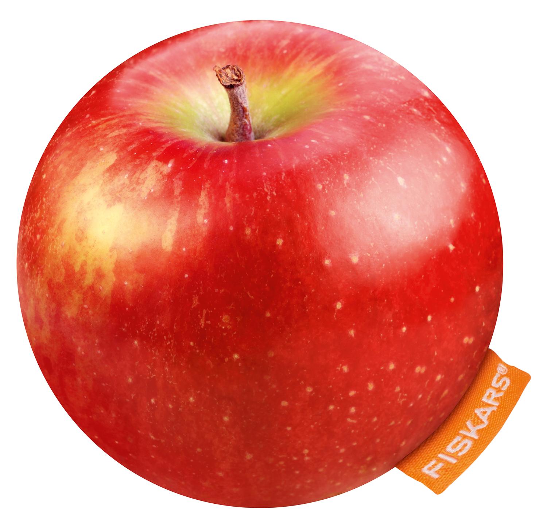 apple_V3